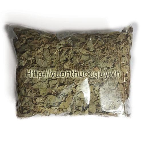 kim tiền thảo khô 1