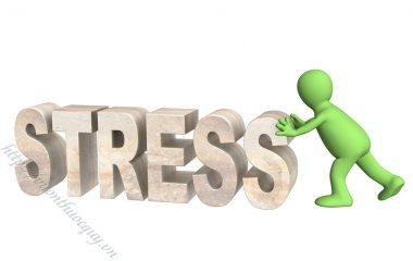 Stress là khái niệm không còn xa lạ gì với nhiều người. Nhất là với cuộc sống hiện đại ngày nay, stress có dấu hiệu gia tăng và ai cũng có thể mắc phải.