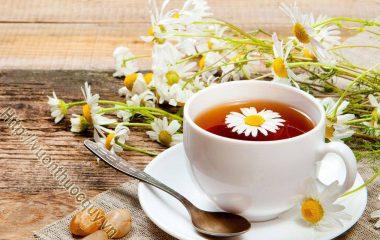 Uống trà thảo dược đúng cách giúp cơ thể tăng khả năng miễn dịch, tăng cường sức đề kháng, giúp dưỡng sinh...tuy nhiên không nên lạm dụng vào trà thảo dược.