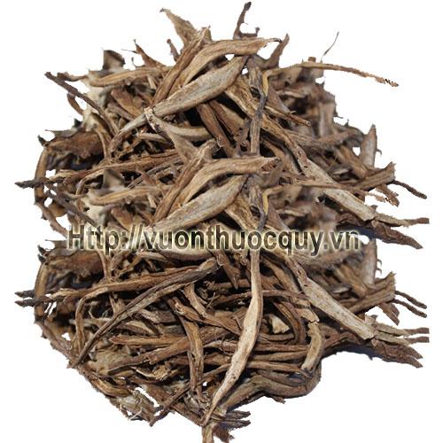 rễ cây atiso khô