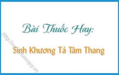 Sinh Khương Tả Tâm Thang là bài thốc hay coa tác dụng hỗ trợ điều trị các chứng ǎn uống không ngon miệng, ợ nóng, buồn nôn, nôn mửa...