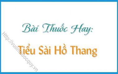 Tiểu Sài Hồ Thang là bài thuốc hay dùng hỗ trợ điều trị trong các trường hợp bị buồn nôn, ǎn uống không ngon miệng, viêm dạ dày...