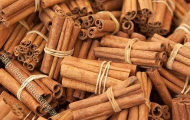 Quế Hỗ Trợ Giảm Cholesterol Xấu; Đông y xem quế là 1 trong 4 vị thuốc quý: sâm, nhung, quế, phụ. Quế có vị ngọt, cay và mùi thơm đặc trưng đồng thời là nguồn...