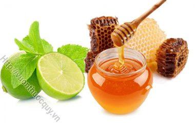 Cách Ngâm Rượu Mật Ong Thơm Ngon; Mật ong vốn được mọi người yêu thích vì hương vị ngọt tự nhiên và có nhiều tác dụng bồi bổ sức khoẻ rất tốt...