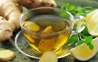 Cách Làm Trà Gừng Tại Nhà; Với công dụng của gừng, chúng ta có thể chế thành trà gừng dùng cho mùa đông, rất tốt cho sức khỏe. Gừng là gia vị quen thuộc...