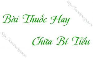bai-thuoc-hay-chua-bi-tieu