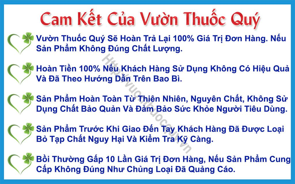 Cam Kết Của Vườn Thuốc Quý