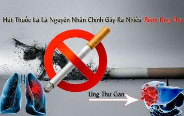 Có rất nhiều nguyên nhân gây ra bệnh ung thư như: hút thuốc lá, lạm dụng rượu bia, môi trường sống bị ô nhiễm, lối sống lười vận động, do di truyền, thức ăn có sử dụng các loại phụ gia, hóa chất...