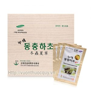 tinh chất đông trùng hạ thảo Ginseng Bio