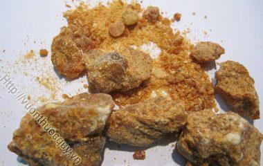 An tức hương là nhựa của cây cánh kiến trắng. An tức hương có tác dụng hỗ trợ điều trị bệnh động kinh, giảm cơn co giật ở trẻ bị động kinh...