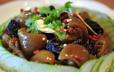 Đuôi Heo Hầm Thuốc Bắc là món ăn vô cùng bổ dưỡng cho sức khỏe có công dụng bổ khí huyết, có lợi trong việc tăng cường sinh lực ở nam giới...