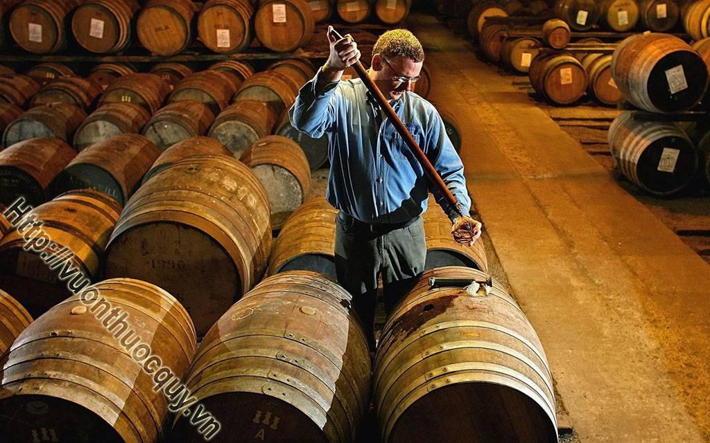 lịch sử ra đời của rượu