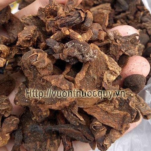nấm ngọc cẩu khô 1
