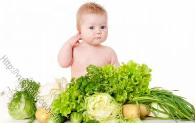 Cho trẻ ăn dặm là phương pháp bổ sung thêm nguồn dinh dưỡng bên ngoài giúp bé phát triển tốt. Nhưng cho trẻ ăn dặm không phải là chuyện đơn giản...