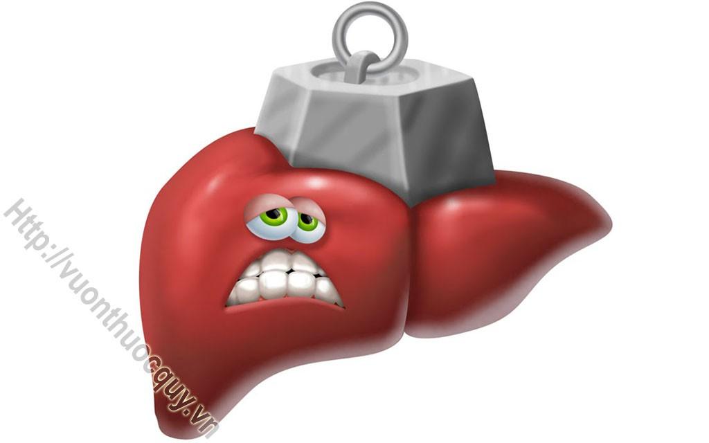 viêm gan a có thể gây tử vong