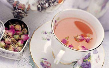 Trà Hoa Hồng Hỗ Trợ Giảm Cân; Ngay từ thời cổ đại, hoa hồng được sử dụng là một phương pháp làm tăng hiệu ứng tích cực cho cơ thể con người...