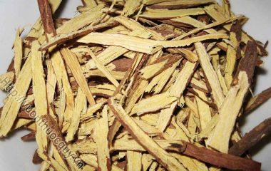 Cam Thảo Bắc Vị Thuốc Đa Dụng; Cam thảo Bắc mà YHCT thường sử dụng thuộc họ đậu (Fabaceae), là những đoạn rễ dài, khoảng 0,3 - 0,5m...