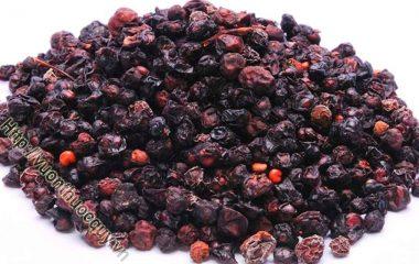 Ngũ Vị Tử Hỗ Trợ Giúp Nhuận Phế; Ngũ vị tử là quả chín phơi hay sấy khô của cây ngũ vị (Schisandra sinensis Baill.), tên khác huyền cập...