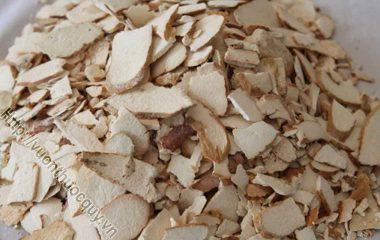 Tỳ Giải Hỗ Trợ Lợi Tiểu; Tỳ giải là rễ phình thành củ của cây tỳ giải (Dioscorea tokogo Makino.) hay một số loài Dioscorea khác thuộc họ Củ nâu (Dioscoreaceae)...
