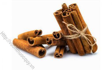 Vỏ Quế Hỗ Trợ Hồi Dương; Trong y học cổ truyền, quế được coi là một trong 4 vị thuốc quý (sâm, nhung, quế, phụ) có vị ngọt cay, mùi thơm, tính nóng...