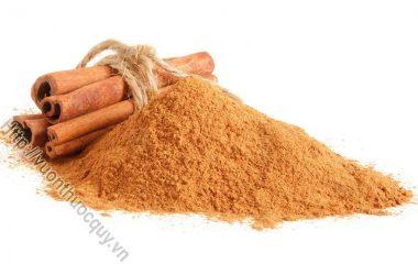 Bột Quế Hỗ Trợ Loại Bỏ Mụn; Quế là một hương vị được yêu thích và nhiều người lựa chọn trong các sản phẩm như kẹo cao su, cà phê và nến...
