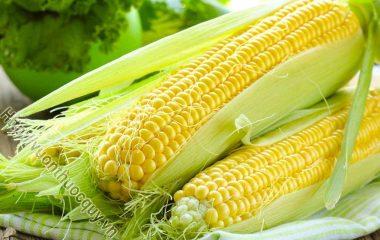 Những Lợi Ích Của Bắp Ngô; Có rất nhiều đồ ăn vặt mà bạn ăn hàng ngày được làm bằng ngô. Ngô không chỉ là một món ăn được ưa thích và còn...