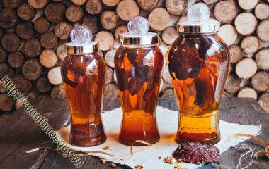 Cách Ngâm Rượu Nấm Linh Chi; Nấm linh chi được xem là một trong những loại thảo dược quý để tăng cường sức khỏe với những công dụng tuyệt vời nó...