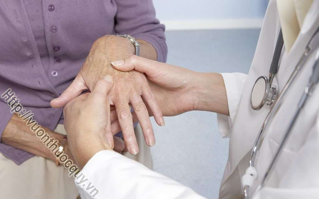 Bài Thuốc Hay Hỗ Trợ Điều Trị Bệnh Phong Thấp