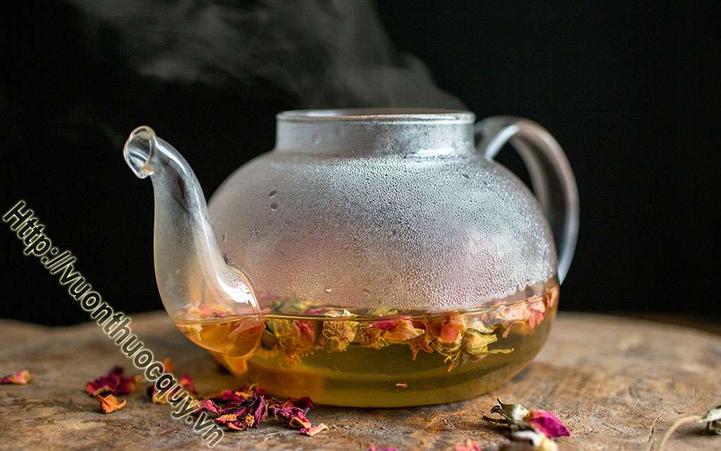 Uống Trà Hoa Hồng Ngăn Ngừa Nếp Nhăn