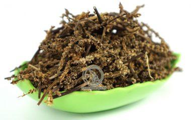 """Mã đề hay còn gọi cách khác là """"mã tiền xá"""", xa tiền thảo có tên khoa học là Plantago asiatica. Là loài là cây thân thảo và là loại cây sống lâu năm. Đây là một loại cây có chức năng tái sinh, tái sinh bằng..."""