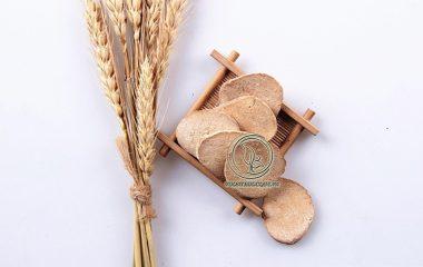 Trạch tả thuộc họ trạch tả, tên khác là mã đề nước, là một cây thảo, cao 40-50cm. Bộ phận dùng làm thuốc của trạch tả là thân rễ, thu hái vào mùa thu là tốt nhất, cạo hết rễ, rửa sạch, phơi hoặc sấy khô.