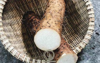 Theo Đông y hoài sơn có vị ngọt không mùi, tính bình không độc là thuốc bổ mát có tác dụng dưỡng vị sinh tân, ích phế bổ thận, chỉ khát chữa tỳ vị suy nhược, nóng sốt khát nước, mồ hôi trộm, đi tiểu nhiều, ăn khó tiêu...