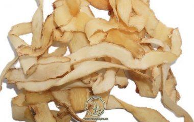 Ngọc trúc là cây cổ sống dai, cao khoảng 40 – 60cm), rễ thân có màu vàng trắng nhạt, mọc ngang, đường kính từ 0.5 – 1.5 cm, thân có nhiều rễ con. Lá Ngọc trúc mọc so le từ thân trở lên, không có cuống, hình trứng...