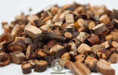 Quế chi là thuốc được lựa chọn từ những cành con của cây quế, còn quế chi tiêm là những cành được lấy ở phần ngọn của cây. Quế chi sau khi sơ chế sẽ có hình trụ dài khoảng 30-50cm, đường kính 0,3 - 1cm...