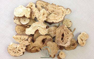 Bạch truật là rễ củ phơi hay sấy khô của cây Bạch truật (Atractylodes macrocephala Koidz.), thuộc họ Cúc (Asteraceae). Về thành phần hoạt chất, bạch truật có các hợp chất sterol, tinh dầu, sinh tố A...