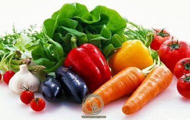 Dạ dày có vai trò quan trọng trong dinh dưỡng. Ngoài việc dự trữ thức ăn đưa vào để tiêu hóa dần, dạ dày còn là cơ quan nghiền nhuyễn thức ăn và tạo điều kiện thuận lợi cho tiêu hóa, hấp thu thức ăn ở ruột non...