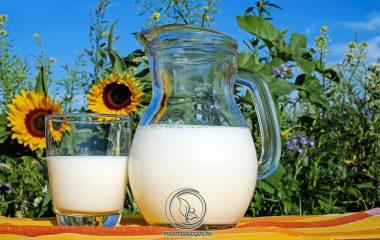 Sữa là thực phẩm cung cấp nhiều chất dinh dưỡng có lợi cho sức khỏe mà người bệnh gút hoàn toàn có thể sử dụng. Đặc biệt hơn, trong sữa có chứa nhiều thành phần dinh dưỡng có khả năng hỗ trợ điều trị và ngăn ngừa bệnh gút..