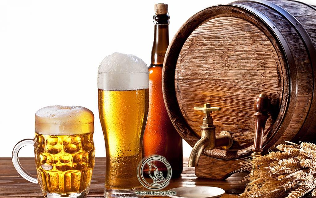 Bia Rượu Nỗi Ám Ảnh Của Người Bị Gout