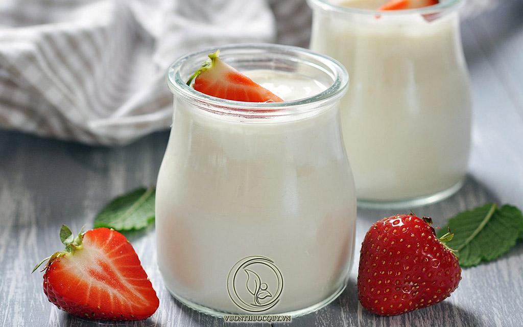 Ăn Sữa Chua Đúng Cách Cho Người Bị Trĩ