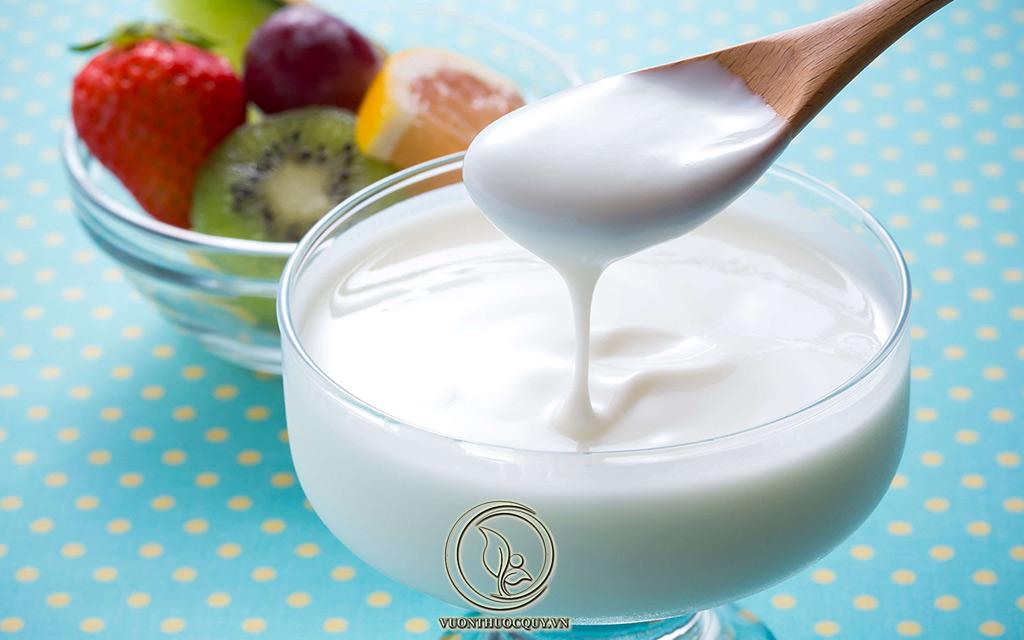 Dùng Sữa Chua Trị Viêm Niệu Đạo Tại Nhà