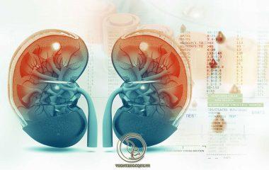 Ghép thận là phương pháp phẫu thuật ngoại khoa thường được chỉ định để cấy ghép thận mới cho bệnh nhân bị suy thận mạn giai đoạn cuối. Nguồn thận để ghép chủ yếu được lấy từ người có cùng huyết thống hoặc những bệnh nhân bị chết não...