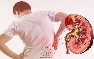 Hội Chứng Thận Hư Tái Phát là tình trạng thất thoát protein từ máu vào trong nước tiểu kèm theo hiện tượng phù, mệt mỏi, rối loạn lipid máu tiếp tục tái diễn sau lần mắc bệnh trong quá khứ. Bệnh nhân chủ yếu được điều trị...