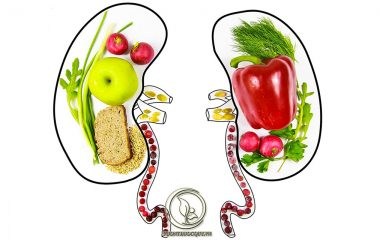 Duy trì một chế độ ăn uống hợp lý với các thực phẩm có lợi sẽ giúp đẩy nhanh hiệu quả điều trị hội chứng thận hư và nâng cao thể chất cho người bệnh. Chính vì vậy, việc nắm rõ bị hội chứng thận hư nên ăn gì và kiêng gì...