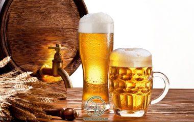 Bia là sản phẩm đồ uống truyền thống không thể thiếu trong mọi bữa ăn hàng ngày của nhiều nền văn hóa khác nhau. Chúng không chỉ giúp kích thích hệ tiêu hóa, ăn ngon miệng mà còn giúp tinh thần trở nên phấn chấn và tỉnh táo...