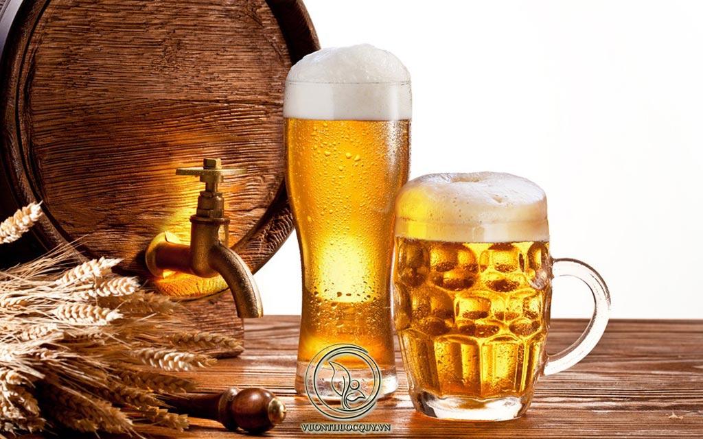 Bị Sỏi Thận Uống Bia Được Không ?