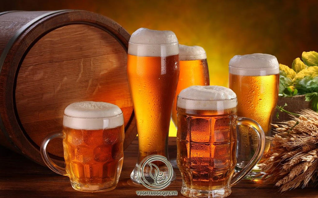 Người Bị Sỏi Thận Có Nên Uống Bia Hay Không ?