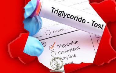 Triglyceride hay còn gọi là chất béo trung tính, là một dạng chất béo mà cơ thể chúng ta vẫn tiêu thụ mỗi ngày. Triglyceride cũng là một trong những thành phần chủ yếu của mỡ động vật, thực vật. Sau khi cơ thể tiêu hóa triglyceride sẽ được...